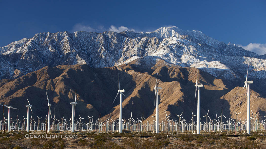 Wind turbines and Mount San Jacinto, rise above the flat floor of the San Gorgonio Pass near Palm Springs, provide electricity to Palm Springs and the Coachella Valley. San Gorgonio Pass, Palm Springs, California, USA, natural history stock photograph, photo id 22240