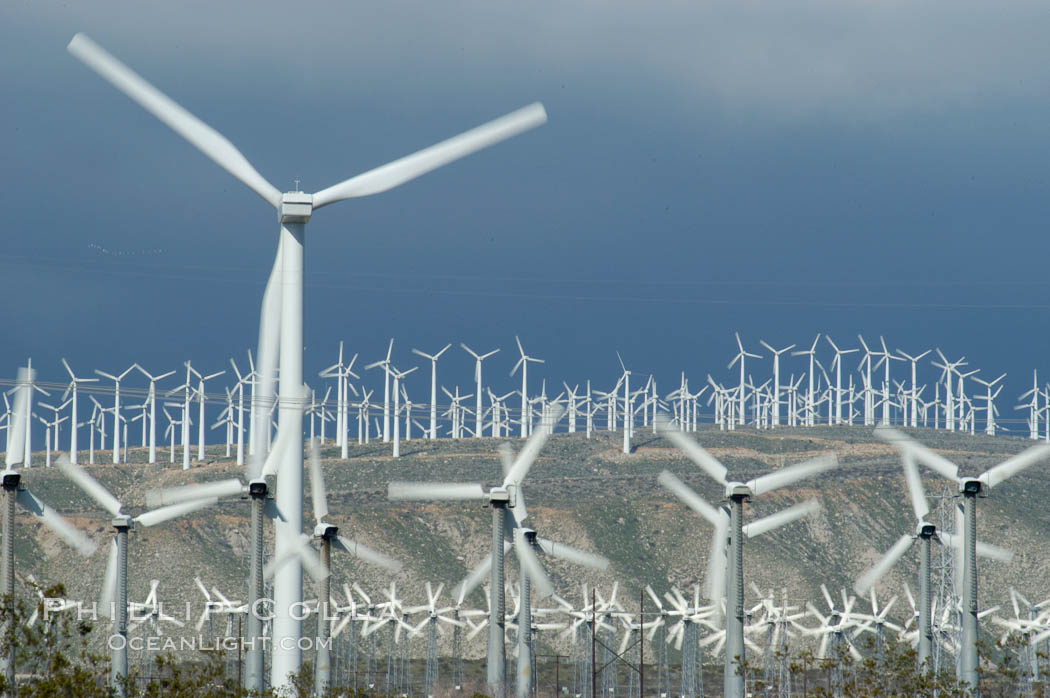 Wind turbines provide electricity to Palm Springs and the Coachella Valley. San Gorgonio pass, San Bernardino mountains. San Gorgonio Pass, Palm Springs, California, USA, natural history stock photograph, photo id 06856