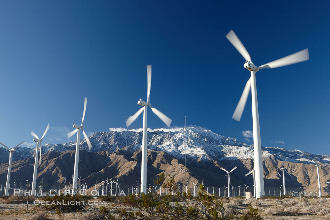 Wind turbines, rise above the flat floor of the San Gorgonio Pass near Palm Springs, with snow covered Mount San Jacinto in the background, provide electricity to Palm Springs and the Coachella Valley. San Gorgonio Pass, Palm Springs, California, USA, natural history stock photograph, photo id 22205