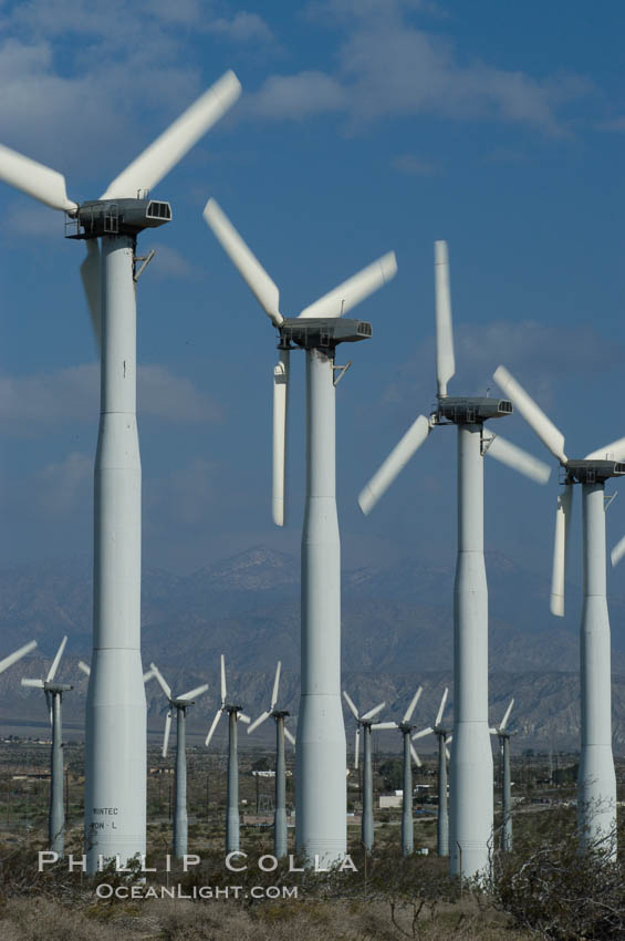 Wind turbines provide electricity to Palm Springs and the Coachella Valley. San Gorgonio pass, San Bernardino mountains. San Gorgonio Pass, Palm Springs, California, USA, natural history stock photograph, photo id 06874