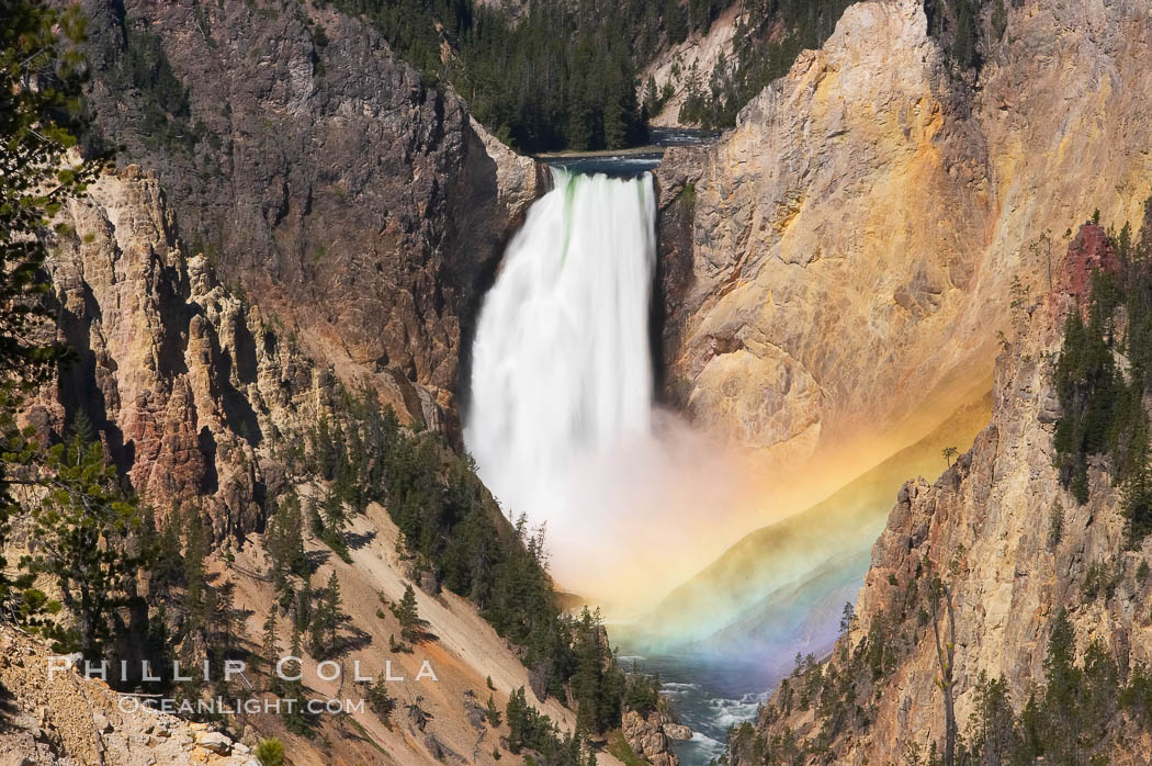 A rainbow appears in the mist of the Lower Falls of the Yellowstone River.  A long exposure blurs the fast-flowing water.  At 308 feet, the Lower Falls of the Yellowstone River is the tallest fall in the park.  This view is from the famous and popular Artist Point on the south side of the Grand Canyon of the Yellowstone.  When conditions are perfect in midsummer, a morning rainbow briefly appears in the falls.,  Copyright Phillip Colla, image #13331, all rights reserved worldwide.