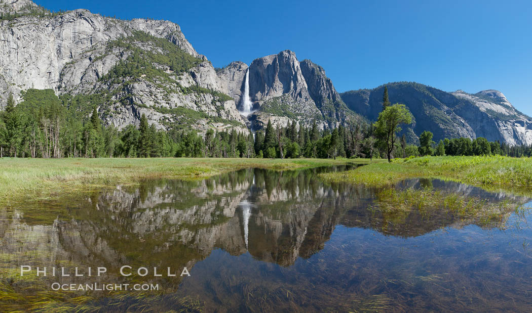 Yosemite Falls reflected in flooded meadow.  The Merced  River floods its banks in spring, forming beautiful reflections of Yosemite Falls. Yosemite National Park, California, USA, natural history stock photograph, photo id 26854