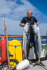 Joe Tobin and North Pacific Yellowtail, Islas San Benito. San Benito Islands (Islas San Benito), Baja California, Mexico. Image #02385