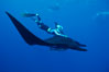Manta ray and freediver. San Benedicto Island (Islas Revillagigedos), Baja California, Mexico. Image #02460