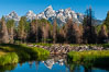 A beaver dam floods a sidewater of the Snake River, creating a pond near Schwabacher Landing. Grand Teton National Park, Wyoming, USA. Image #07340