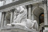 The stone lions Patience and Fortitude guard the entrance to the New York City Public Library. Manhattan, New York City, New York, USA. Image #11154