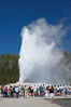 A crowd enjoys watching Old Faithful geyser at peak eruption. Upper Geyser Basin, Yellowstone National Park, Wyoming, USA