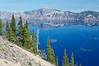 Whitebark pine, Crater Lake, Oregon. Due to harsh, almost constant winds, whitebark pines along the crater rim surrounding Crater Lake are often deformed and stunted. Crater Lake National Park, Oregon, USA. Image #13949