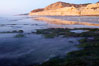 Eel grass sways in an incoming tide, with the sandstone cliffs of Torrey Pines State Reserve in the distance. San Diego, California, USA. Image #14729