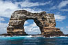 Darwins Arch, a dramatic 50-foot tall natural lava arch, rises above the ocean a short distance offshore of Darwin Island. Galapagos Islands, Ecuador. Image #16621