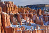 Bryce Canyon hoodoos line all sides of the Bryce Amphitheatre. Bryce Canyon National Park, Utah, USA. Image #18618