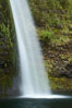 Horsetail Falls drops 176 feet just a few yards off the Columbia Gorge Scenic Highway. Columbia River Gorge National Scenic Area, Oregon, USA. Image #19317