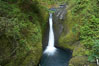 Oneonta Falls drops 50 feet in the Oneonta Gorge. Columbia River Gorge National Scenic Area, Oregon, USA. Image #19322