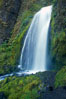 Wahkeena Falls drops 249 feet in several sections through a lush green temperate rainforest. Columbia River Gorge National Scenic Area, Oregon, USA. Image #19325