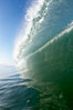 Breaking wave, tube, hollow barrel, morning surf. Image #19532
