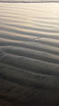 Patterns in the sand on a flat sandy beach at the water's edge. Carlsbad, California, USA. Image #19815