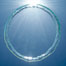 A bubble ring.  A toroidal bubble ring rises through the water on its way to the surface. Image #20780