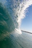 Cresting wave, morning light, glassy water, surf. Cardiff by the Sea, California, USA. Image #20814