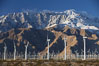 Wind turbines and Mount San Jacinto, rise above the flat floor of the San Gorgonio Pass near Palm Springs, provide electricity to Palm Springs and the Coachella Valley. California, USA. Image #22241