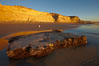 Torrey Pines State Beach, sandstone cliffs rise above the beach at Torrey Pines State Reserve. San Diego, California, USA. Image #22440