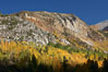 The Hunchback, a peak rising above the South Fork of Bishop Creek Canyon, with yellow and orange aspen trees changing to their fall colors. Bishop Creek Canyon, Sierra Nevada Mountains, California, USA. Image #23328