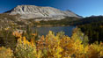 Mount Morgan and Rock Creek Lake with changing aspens, fall colors, autumn. Rock Creek Canyon, Sierra Nevada Mountains, California, USA. Image #23330