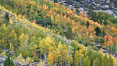 Aspen trees, create a collage of autumn colors on the sides of Rock Creek Canyon, fall colors of yellow, orange, green and red. Rock Creek Canyon, Sierra Nevada Mountains, California, USA. Image #23348