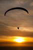 Paraglider soaring at Torrey Pines Gliderport, sunset, flying over the Pacific Ocean. La Jolla, California, USA. Image #24287