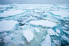 Pack ice and brash ice fills the Weddell Sea, near the Antarctic Peninsula.  This pack ice is a combination of broken pieces of icebergs, sea ice that has formed on the ocean. Weddell Sea, Southern Ocean. Image #24790