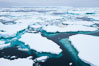 Pack ice and brash ice fills the Weddell Sea, near the Antarctic Peninsula.  This pack ice is a combination of broken pieces of icebergs, sea ice that has formed on the ocean. Southern Ocean. Image #24839