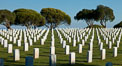 Fort Rosecrans National Cemetery. San Diego, California, USA. Image #26577