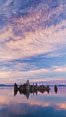 Mono Lake sunset, tufa and clouds reflected in the still waters of Mono Lake. California, USA. Image #26977