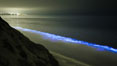 Lingulodinium polyedrum red tide dinoflagellate plankton, glows blue when it is agitated in wave and is visible at night. La Jolla, California, USA. Image #27063