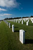 Fort Rosecrans National Cemetery. San Diego, California, USA. Image #27881