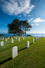 Fort Rosecrans National Cemetery. San Diego, California, USA. Image #27885