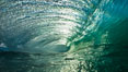 Breaking wave, morning, barrel shaped surf, California. The Wedge, Newport Beach, USA. Image #27986