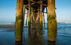 Newport Pier, underneath the pier, pilings and ocean. Newport Beach, California, USA. Image #28472