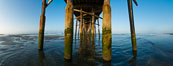 Newport Pier, underneath the pier, pilings and ocean. Newport Beach, California, USA. Image #28473