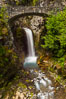 Christine Falls. Mount Rainier National Park, Washington, USA. Image #28717