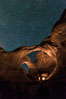 Stars over Double Arch, Arches National Park. Utah, USA. Image #29251