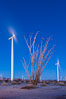 Ocotillo Express Wind Energy Projects, moving turbines lit by the rising sun, California, USA. Image #30243