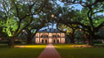 Oak Alley Plantation and its famous shaded tunnel of  300-year-old southern live oak trees (Quercus virginiana).  The plantation is now designated as a National Historic Landmark. Vacherie, Louisiana, USA. Image #31012