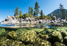 Split view of Trees and Underwater Boulders, Lake Tahoe, Nevada. USA. Image #32353
