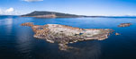 Steller Sea Lions atop Norris Rocks, Hornby Island in the distance, panoramic photo. British Columbia, Canada. Image #34467