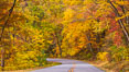 Blue Ridge Parkway Fall Colors, Asheville, North Carolina. USA. Image #34638