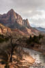 The Watchman and Virgin River at sunset with cleaing stormclouds. Zion National Park, Utah, USA. Image #36049