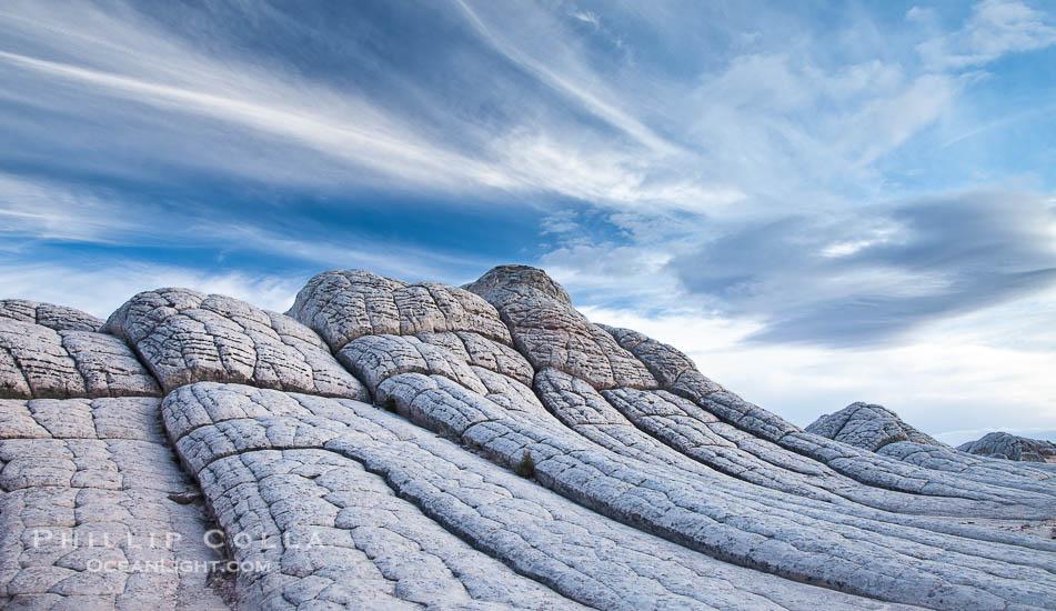 Brain Rocks, White Pocket, Arizona