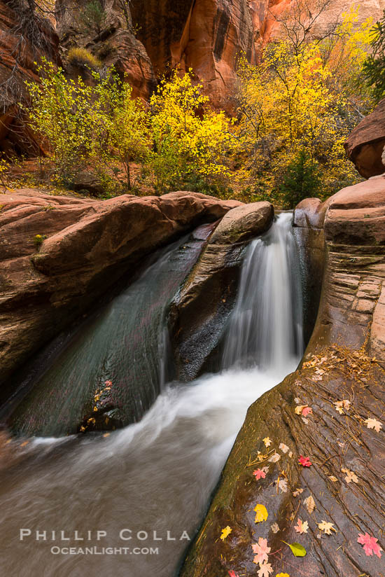 Hiking Kanarra Creek Falls, Kanarraville, Utah