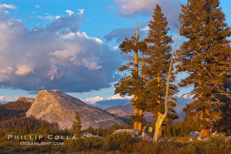 Lembert Dome Sunset, Tuolumne Meadows, Yosemite National Park