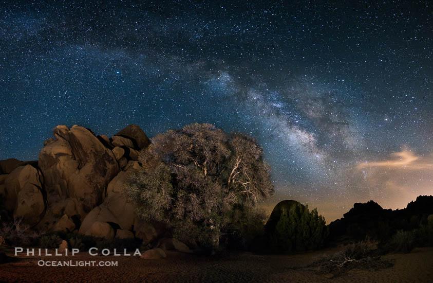 Live Oak and Rocks, Milky Way Galaxy, Joshua Tree National Park
